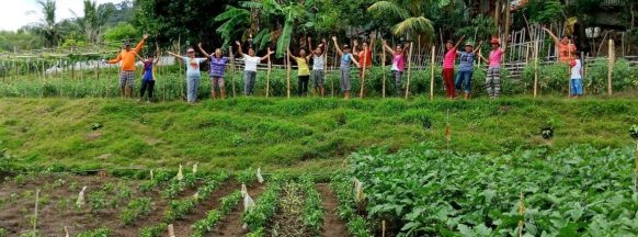4Ps beneficiaries in Anini-y take part in 'backyard gardening'