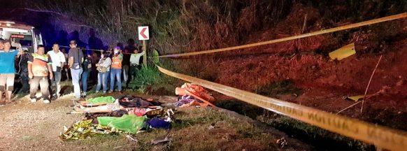 Bus falls off ravine in  DSB; 4 killed, 8 hurt