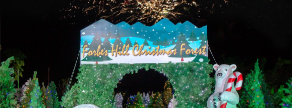 Around 250 Christmas trees lit up in Bacolod City